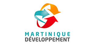 martinique developpement